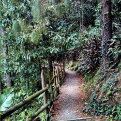 Parque El Salado – Medellin Off The Beaten Track