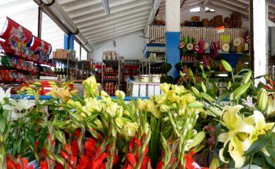 Playa Del Carmen DAC Market