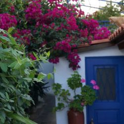 A Wander with Athens Insiders