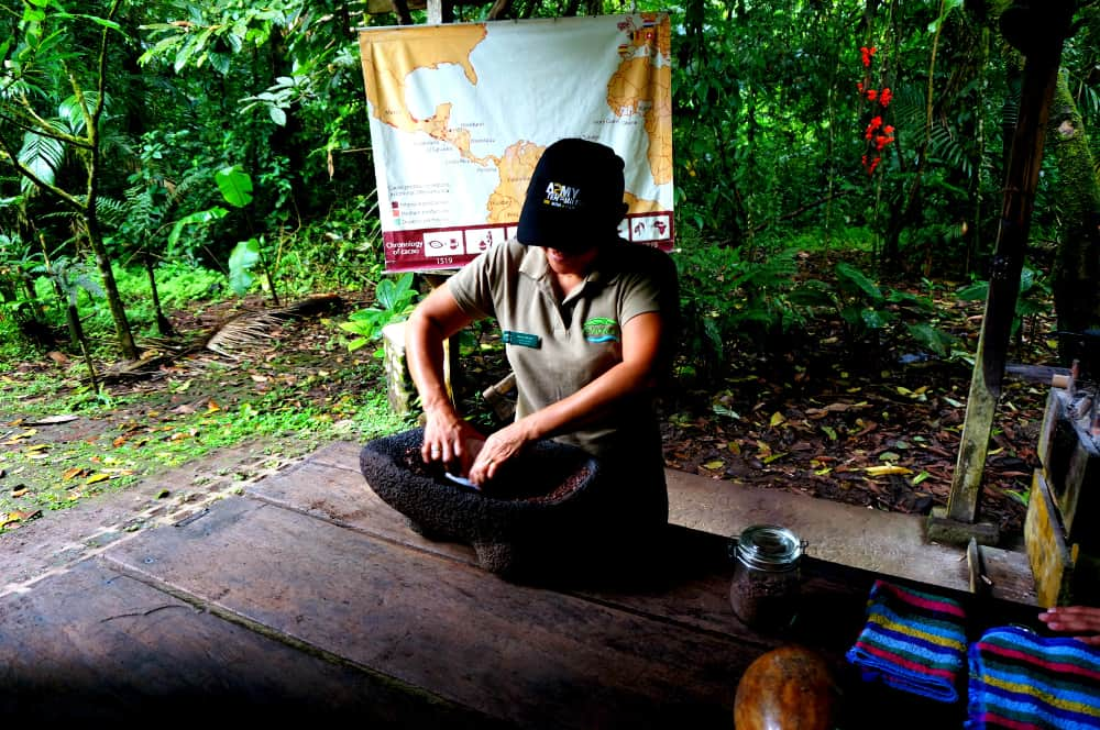 Rainforest Tour Costa Rica Chocolate