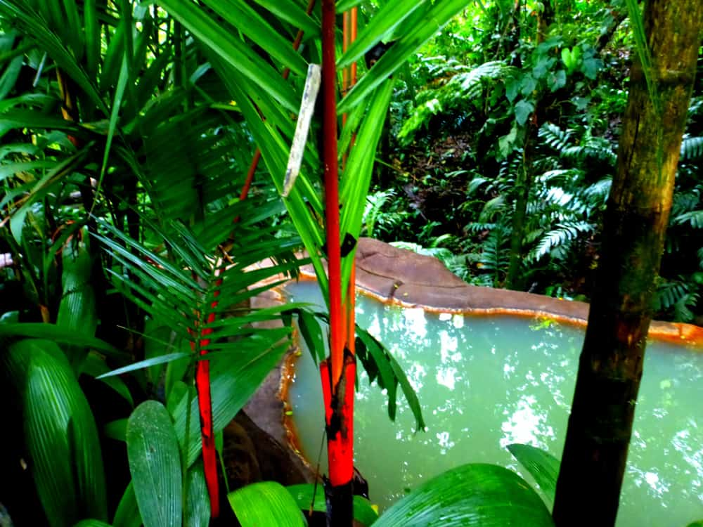 Lose Yourself At The Springs Spa Costa Rica