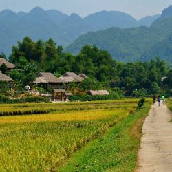 Mai Chau Valley Vietnamese Cooking Class