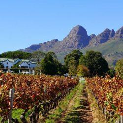 Stellenbosch – Uncorking a Luxury Travel Destination For Less
