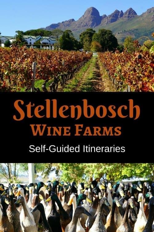 Stellenbosch Itineraries