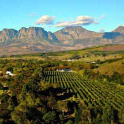 Stellenbosch Wine Farm Itineraries