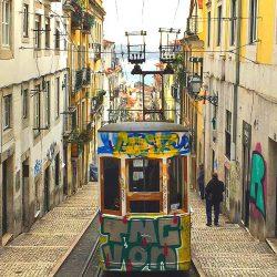 Wine Tasting in Lisbon Portugal