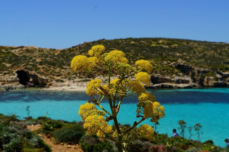 24 Hours in Gozo Malta