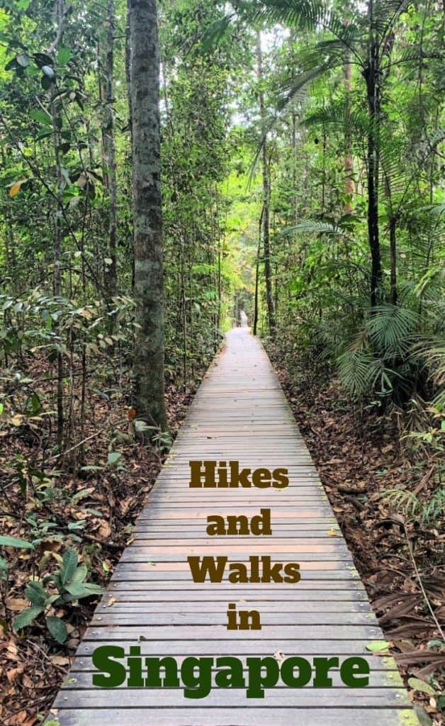 Hiking in Singapore Pin