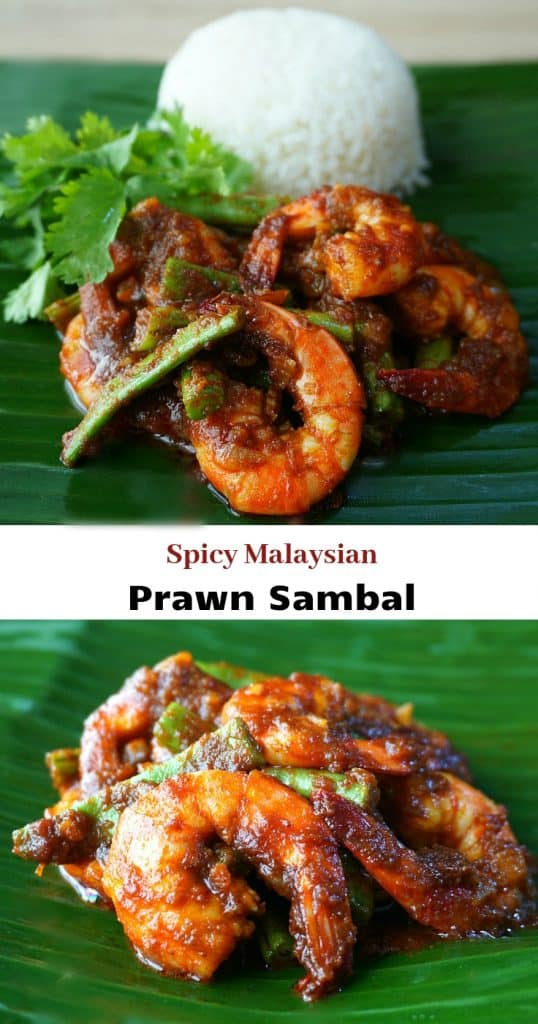 Malaysian Shrimp Sambal