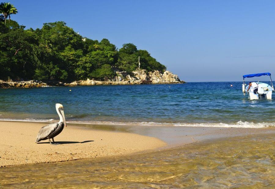 Beaches of Puerto Vallarta: Mismaloya Beach