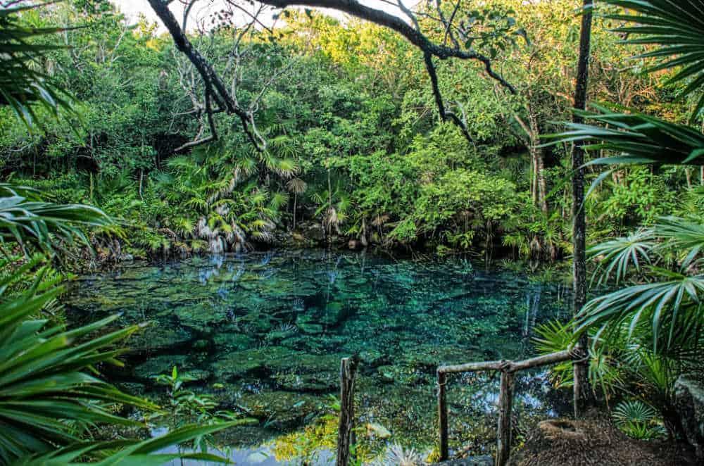 Tankah Cenote