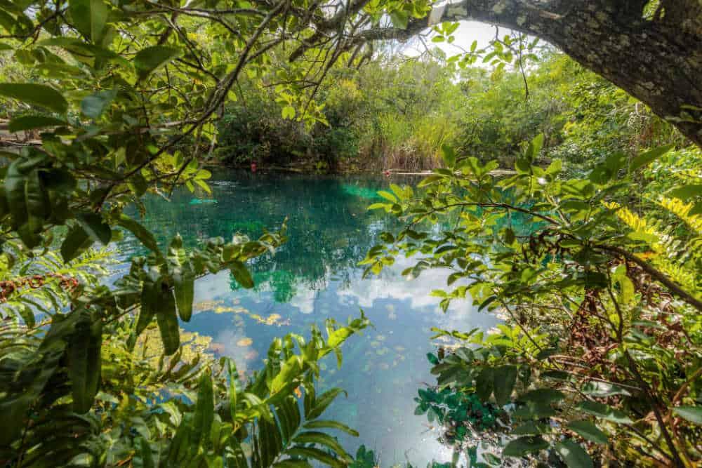 Carwash Cenote