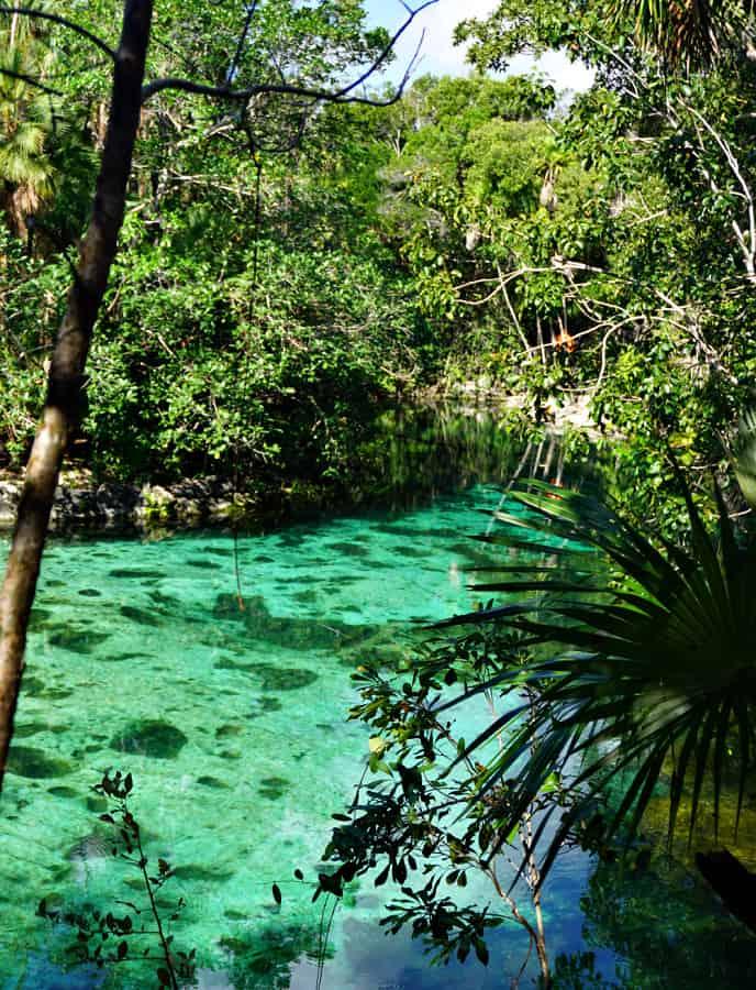 Cenote Yax-Kin Playa Del Carmen