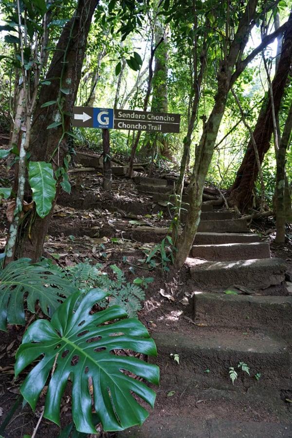 PV Botanical Garden Trails