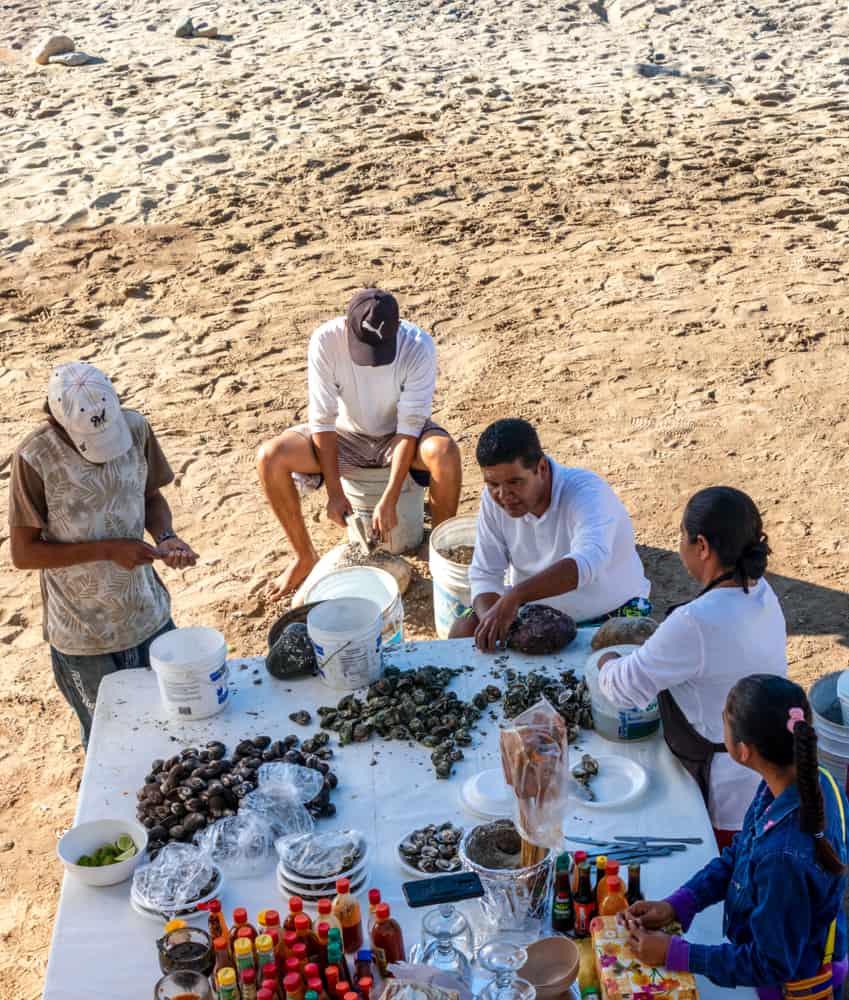Vallarta Oyster Vendor